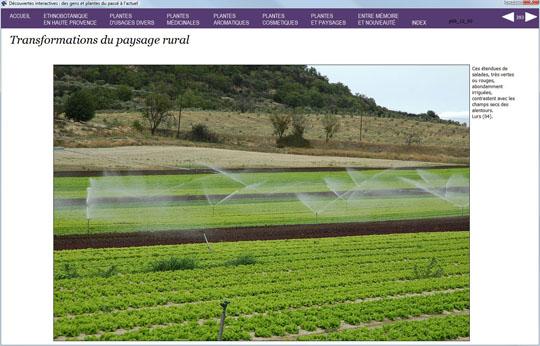 C d rom pc des gens des plantes ethnobotanique for Commander des plantes