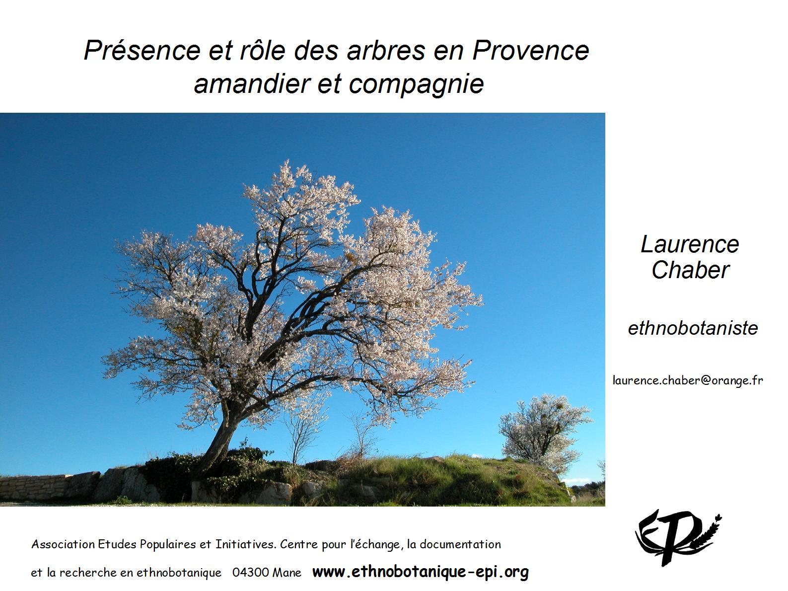 _Arbres Provence amandier_Oraison 11 oct 2015